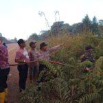 90 Hektar Lahan Belukar di Parenggean Terbakar