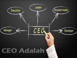 Bedah Istilah Jabatan CEO, Presiden Direktur, dan Direktur Utama di Perusahaan